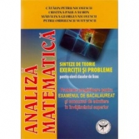 Analiza matematica: sinteze teorie exercitii