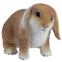 Animale de casa - Iepure de casa cu urechi