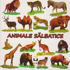 Animale salbatice (cartonata)