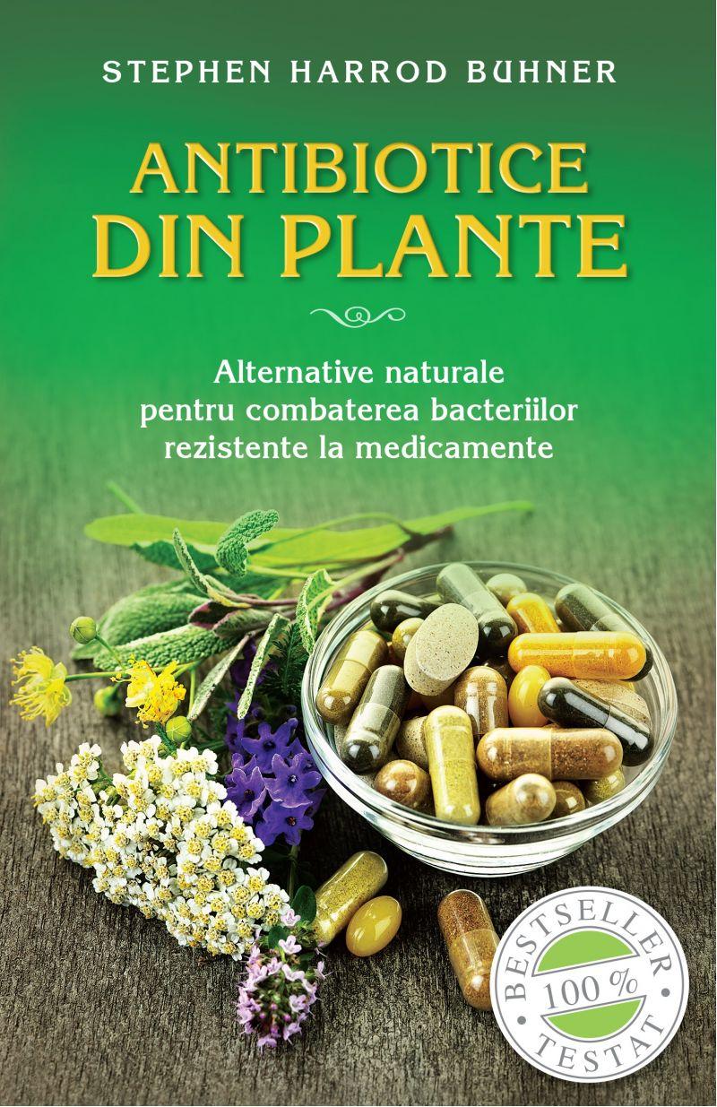 Antibiotice din plante - Alternative naturale pentru combaterea bacteriilor rezistente la medicamente