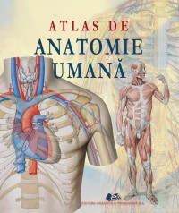 Atlas anatomie umana