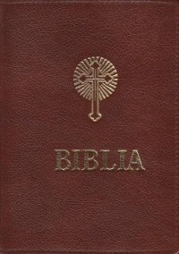 Biblia sau Sfanta Scriptura Coperti