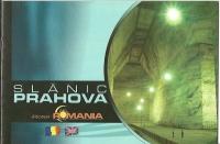 Brosura Slanic Prahova (Salina)