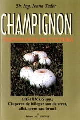 CHAMPIGNON tehnologia cultura