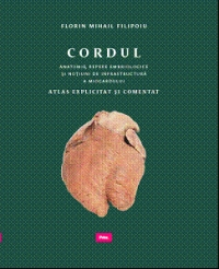 Cordul Anatomie repere embriologice notiuni