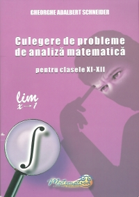 Culegere probleme analiza matematica pentru