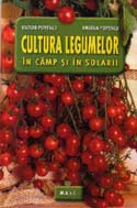 Cultura legumelor camp solarii