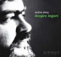 Despre ingeri (Audiobook)