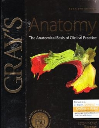 Gray Atlas Anatomy The Anatomical