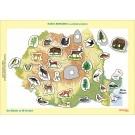Harta Romaniei Cu Animale Si Plante  Joc Didactic Cu 29 De Piese