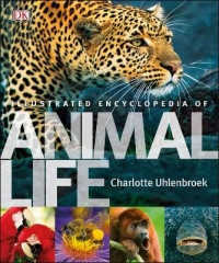 ILLUSTRATED ENCYCLOPEDIA ANIMALS