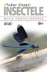 INSECTELE MICA ENCICLOPEDIE