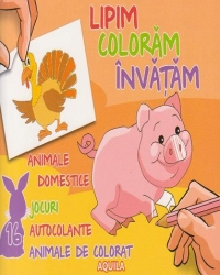 Lipim coloram invatam Animale domestice