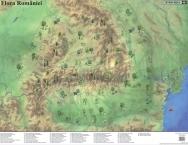 Mapa de birou Flora/Fauna