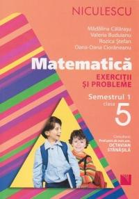 Matematica. Exercitii si probleme pentru clasa a V-a, semestrul 1