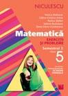 Matematica. Exercitii si probleme pentru clasa a V-a, semestrul II