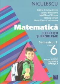 Matematica. Exercitii si probleme pentru clasa a VI-a, semestrul II