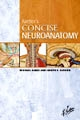 Netters Concise Neuroanatomy