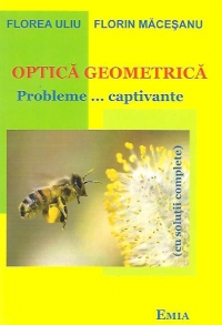 Optica geometria Probleme captivante