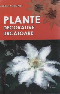 Plante decorative urcatoare