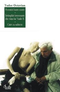 Povestiri foarte scurte, intamplari din viata lui Vasile B., Caiet cu subiecte
