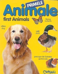 Primele animale First Animals File