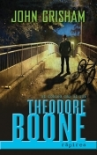 Theodore Boone: Rapirea