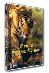 O viata pe urmele tigrului