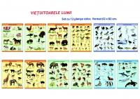 VIETUITOARE si PLANTE- set de 18 planse color