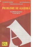 Analiza matematica - Culegere de probleme - Limite de